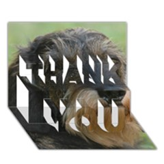 Wirehaired Dachshund THANK YOU 3D Greeting Card (7x5)