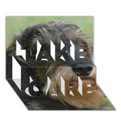 Wirehaired Dachshund TAKE CARE 3D Greeting Card (7x5)