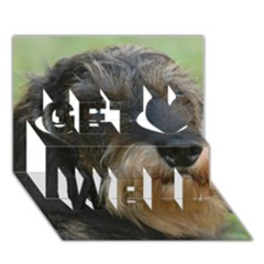 Wirehaired Dachshund Get Well 3D Greeting Card (7x5)