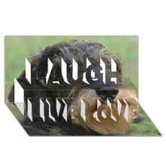 Wirehaired Dachshund Laugh Live Love 3D Greeting Card (8x4)