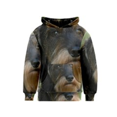 Wirehaired Dachshund Kid s Pullover Hoodies