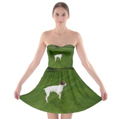 German Shorthair Pointer Full Strapless Bra Top Dress