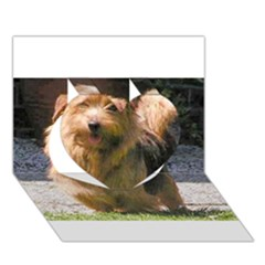 Norfolk Terrier Full Heart 3D Greeting Card (7x5)