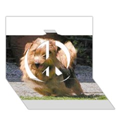 Norfolk Terrier Full Peace Sign 3D Greeting Card (7x5)