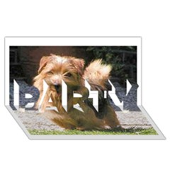 Norfolk Terrier Full Party 3d Greeting Card (8x4)