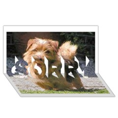 Norfolk Terrier Full SORRY 3D Greeting Card (8x4)