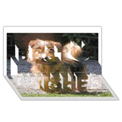 Norfolk Terrier Full Best Wish 3D Greeting Card (8x4)