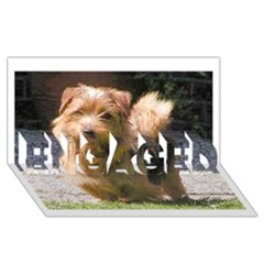 Norfolk Terrier Full Engaged 3d Greeting Card (8x4)