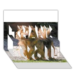 Norfolk Terrier Full THANK YOU 3D Greeting Card (7x5)