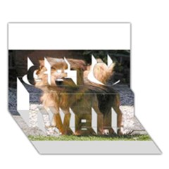 Norfolk Terrier Full Get Well 3D Greeting Card (7x5)