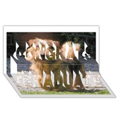 Norfolk Terrier Full Congrats Graduate 3D Greeting Card (8x4)