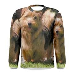 Norfolk Terrier Full Men s Long Sleeve T-shirts