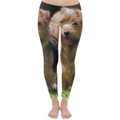 Norfolk Terrier Full Winter Leggings