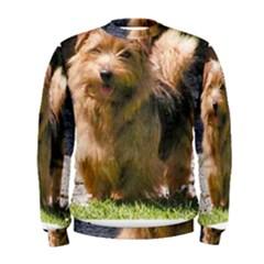 Norfolk Terrier Full Men s Sweatshirts