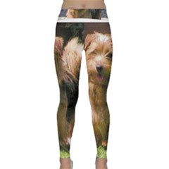 Norfolk Terrier Full Yoga Leggings