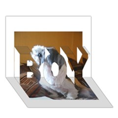 Shih Tzu Sitting BOY 3D Greeting Card (7x5)