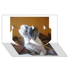 Shih Tzu Sitting Twin Hearts 3D Greeting Card (8x4)
