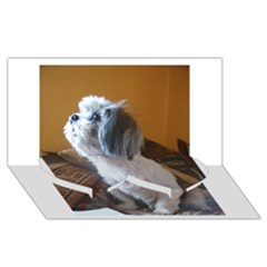 Shih Tzu Sitting Twin Heart Bottom 3D Greeting Card (8x4)