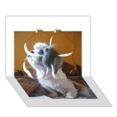 Shih Tzu Sitting Clover 3D Greeting Card (7x5)