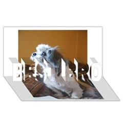 Shih Tzu Sitting BEST BRO 3D Greeting Card (8x4)