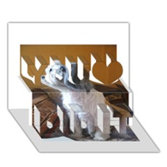 Shih Tzu Sitting You Did It 3D Greeting Card (7x5)