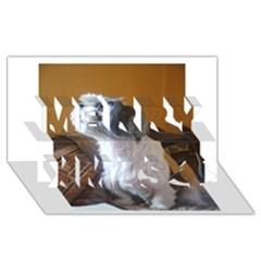 Shih Tzu Sitting Merry Xmas 3D Greeting Card (8x4)