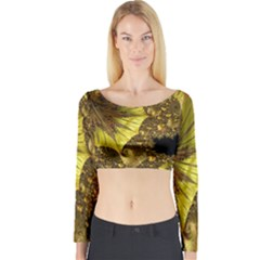 Special Fractal 35cp Long Sleeve Crop Top