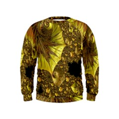 Special Fractal 35cp Boys  Sweatshirts