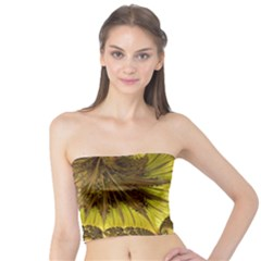 Special Fractal 35cp Women s Tube Tops