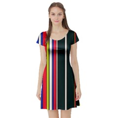 Hot Stripes Red Blue Short Sleeve Skater Dresses