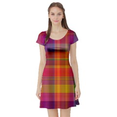 Plaid, Hot Short Sleeve Skater Dresses