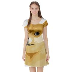 Dogecoin Short Sleeve Skater Dresses