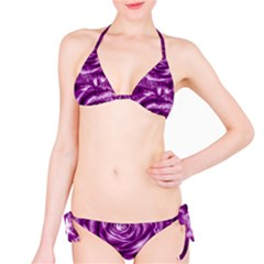 Gorgeous Roses,purple  Bikini Set
