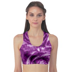 Gorgeous Roses,purple  Sports Bra