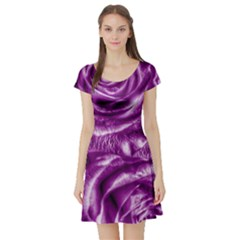 Gorgeous Roses,purple  Short Sleeve Skater Dresses