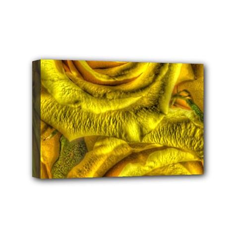 Gorgeous Roses, Yellow  Mini Canvas 6  X 4