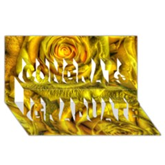 Gorgeous Roses, Yellow  Congrats Graduate 3d Greeting Card (8x4)