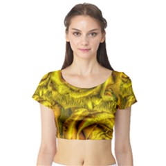 Gorgeous Roses, Yellow  Short Sleeve Crop Top