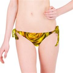 Gorgeous Roses, Yellow  Bikini Bottoms