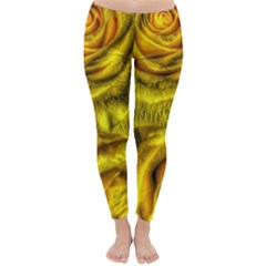 Gorgeous Roses, Yellow  Winter Leggings