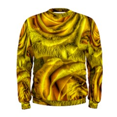 Gorgeous Roses, Yellow  Men s Sweatshirts