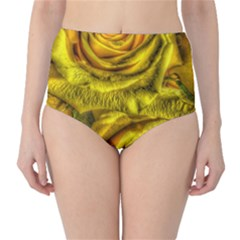 Gorgeous Roses, Yellow  High-Waist Bikini Bottoms
