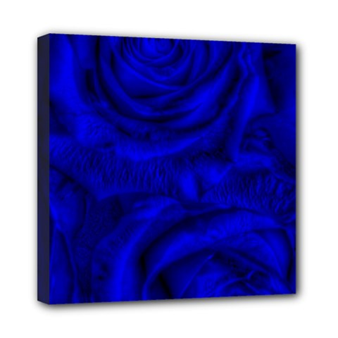 Gorgeous Roses,deep Blue Mini Canvas 8  X 8