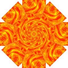 Gorgeous Roses, Orange Straight Umbrellas