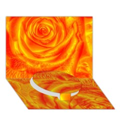 Gorgeous Roses, Orange Circle Bottom 3d Greeting Card (7x5)