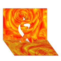 Gorgeous Roses, Orange Ribbon 3d Greeting Card (7x5)
