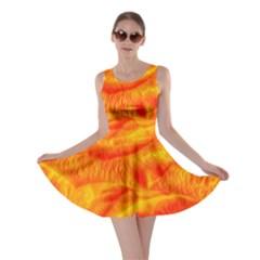 Gorgeous Roses, Orange Skater Dresses
