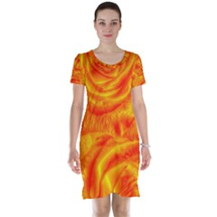 Gorgeous Roses, Orange Short Sleeve Nightdresses