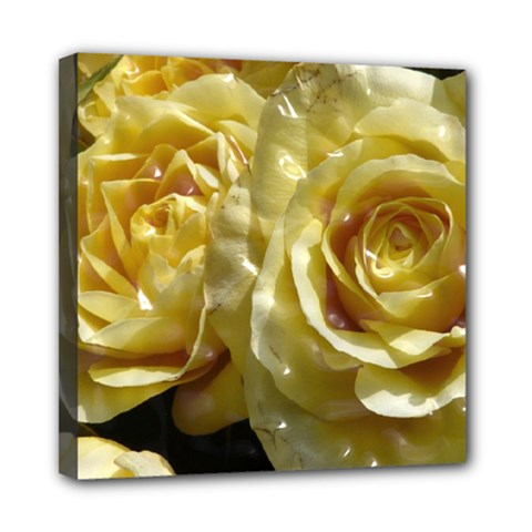 Yellow Roses Mini Canvas 8  X 8