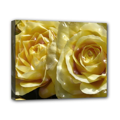 Yellow Roses Canvas 10  X 8